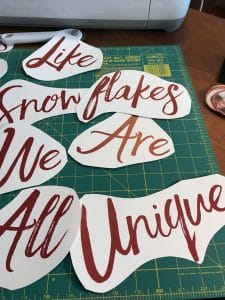 Like Snowflakes We Are All Unique
