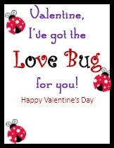 Kid Valentines Love Bug